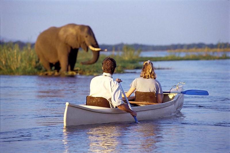 canoeing_safari_zambezi_1.2m